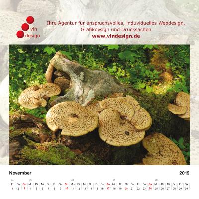 kalender_2019_12.jpg